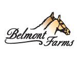 Belmont Farms Real Estate | Belmont Farms Homes for Sale
